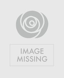 Assorted tropical flowers in a clear glass vase accented with sand and sea shells.