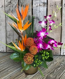 Birds of paradise, protea, orchids and other tropical flowers with berries in a contemporary vase.