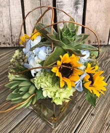 Sunflowers and Succulents