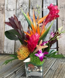 Birds of paradise, anthurium and ginger in a clear glass cube vase filled with sand and sea shells.