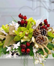 Holiday centerpiece of orchids, cedar, pine and berries
