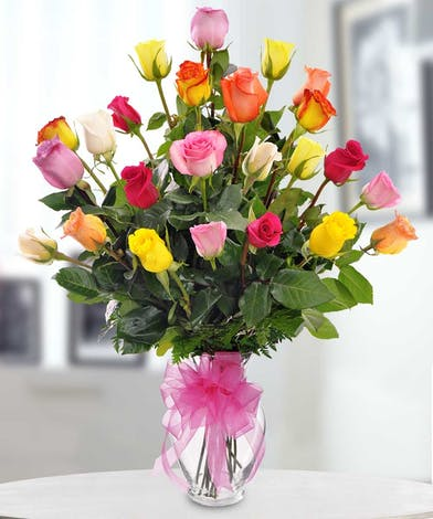 Classic Colorful Roses