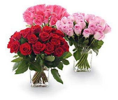 Cluster of 25 roses in a clear glass cube vase.