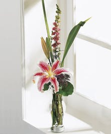 A luscious stargazer lily with lush greenery