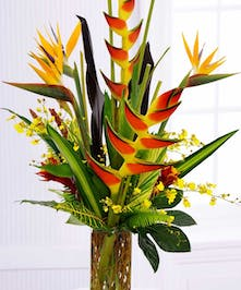 Birds of paradise, oncidium orchids, heliconia, ginger and tropical foliage in a tall glass vase.