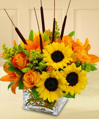 Glass cube filled with sunflowers, lilies, roses and catails