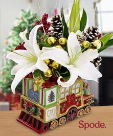 2013 Spode Holiday Express Train