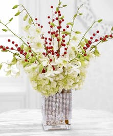 Vase of White Orchids and Red Berries