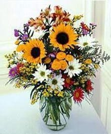 Sunflowers, delphinium & assorted filler flowers