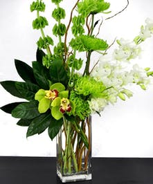 Bells of Ireland and orchids in shades of green in a tall glass cube vase.