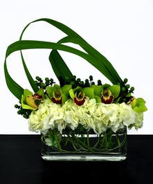 Green orchids and white hydrangea in a long glass cube vase.