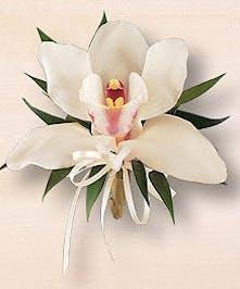 White cymbidium orchid corsage.
