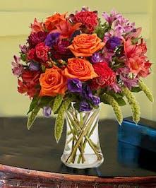 Coxcomb, roses, dahlias & more
