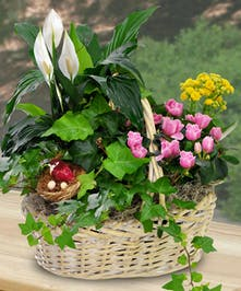 Woven handbasket filled with an assortment of fresh plants and flowers.