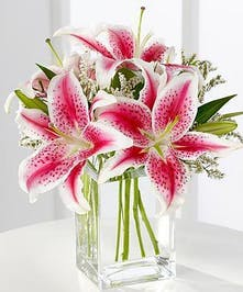 Stargazer lilies and pink statice in a clear glass vase.