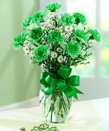 Tall green carnations and white flowers in a glass vase tied with green ribbon.