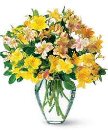 Yellow alstroemeria in a clear glass vase.
