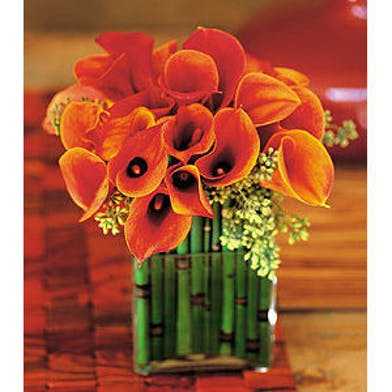 Bronze calla lilies with equisetum stalks styled in a square glass vase.