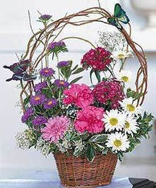 Asters, lisianthus, daisy pompoms, cushion pompoms, statice, waxflower and myrtle accented with curly willow and butterflies in a wicker basket.