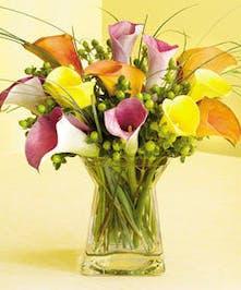 Petite Cala Bouquet