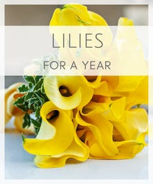 Lilies for a Year
