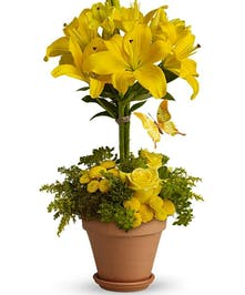 Tall arrangement of yellow lilies with butterfly decoration.