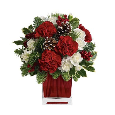 Glass cube of red and white carnations with winter greenery and pine cones