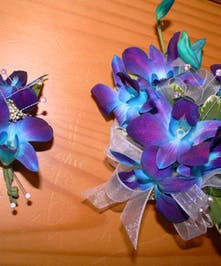 Purple & Blue Electric - Marco Island Florist