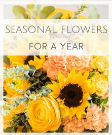 Seasonal Flowers for a Year