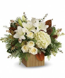 Snowy Woods Holiday Bouquet - Marco Island Florist
