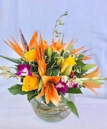 Marco island florist marco island naples flower delivery gifts waikiki mightylinksfo