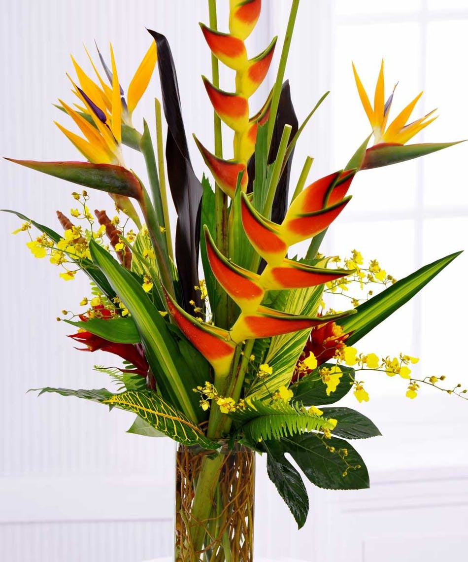 Tropical Fantasy Naples Exotic Tropical Flower Delivery