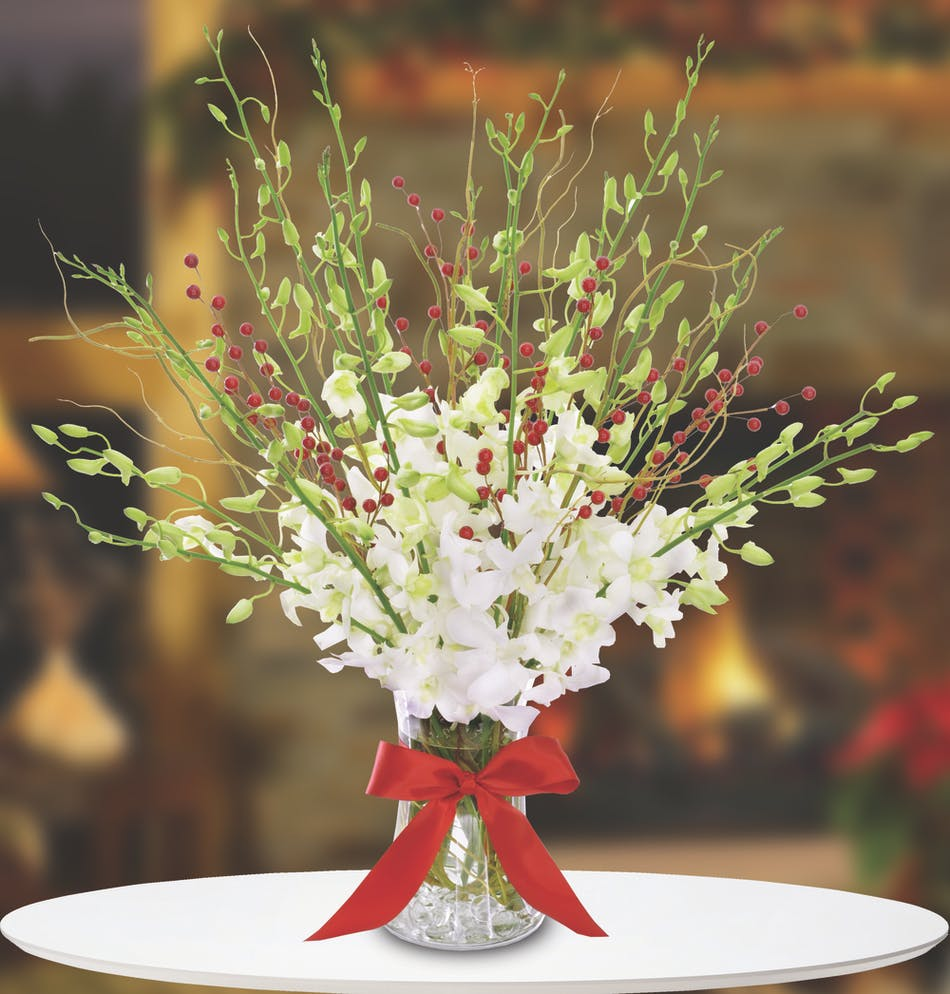 Vase filled with white orchids and red berries