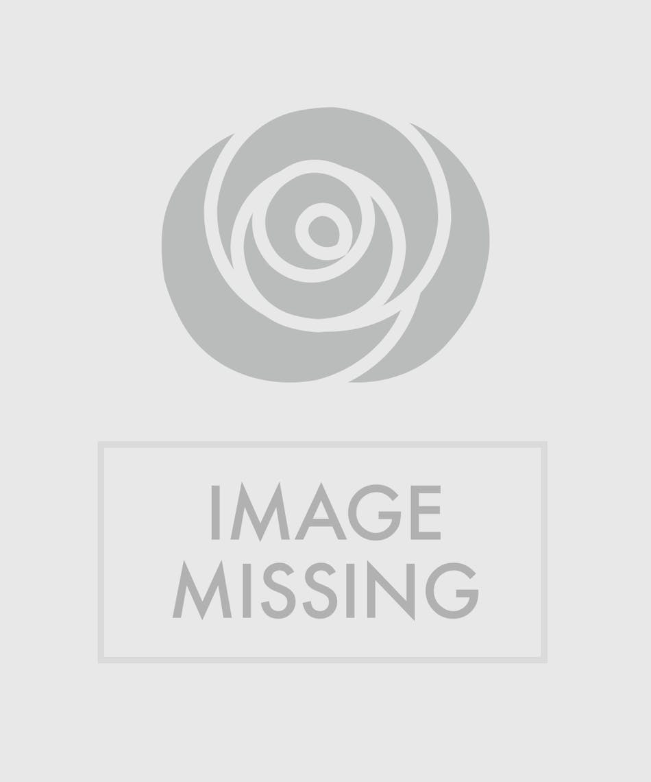 Assorted Tropical Bouquet Naples Tropical Flower Delivery