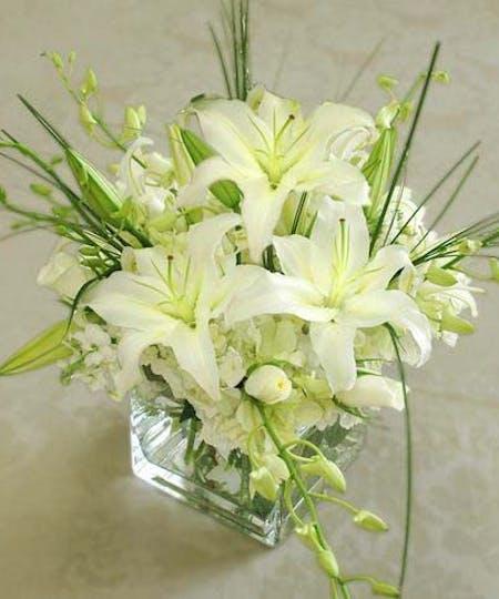 Vased Flowers