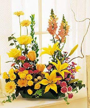 Parallel Vegetative Design Florist Marco Island Naples