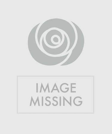 Fruit Gourmet Gift Basket Marco