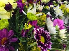 A lovely assortment of green, yellow, purple and white flowers